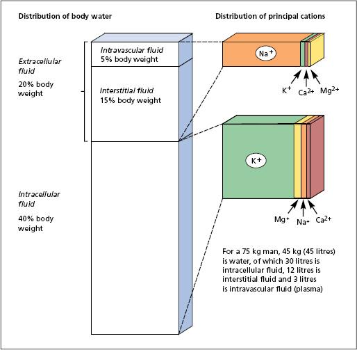 lecture notes general surgery harold ellis pdf
