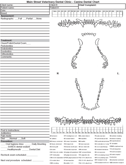 Canine Dental Chart 208 Veterinary Charting Symbols