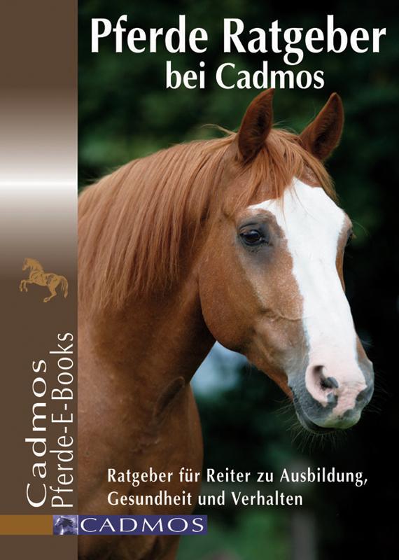 NEU Anne-Katrin Hagen Pferde richtig ausbilden  Cadmos Verlag