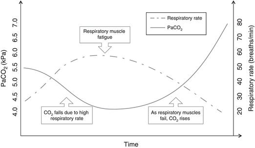 homeostatic mechanisms for regulation of breathing rate