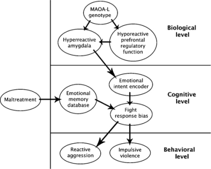 morton and frith causal model dyslexia And fragile x syndrome: incorporating perceptual phenotypes in causal modeling  an adapted and extended causal model based on perceptual phenotypes associations between genetic, neurocognitive and behav-  (morton and frith 1995) for example, in a model such as that proposed by.